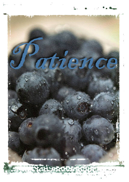 blueberries-patience
